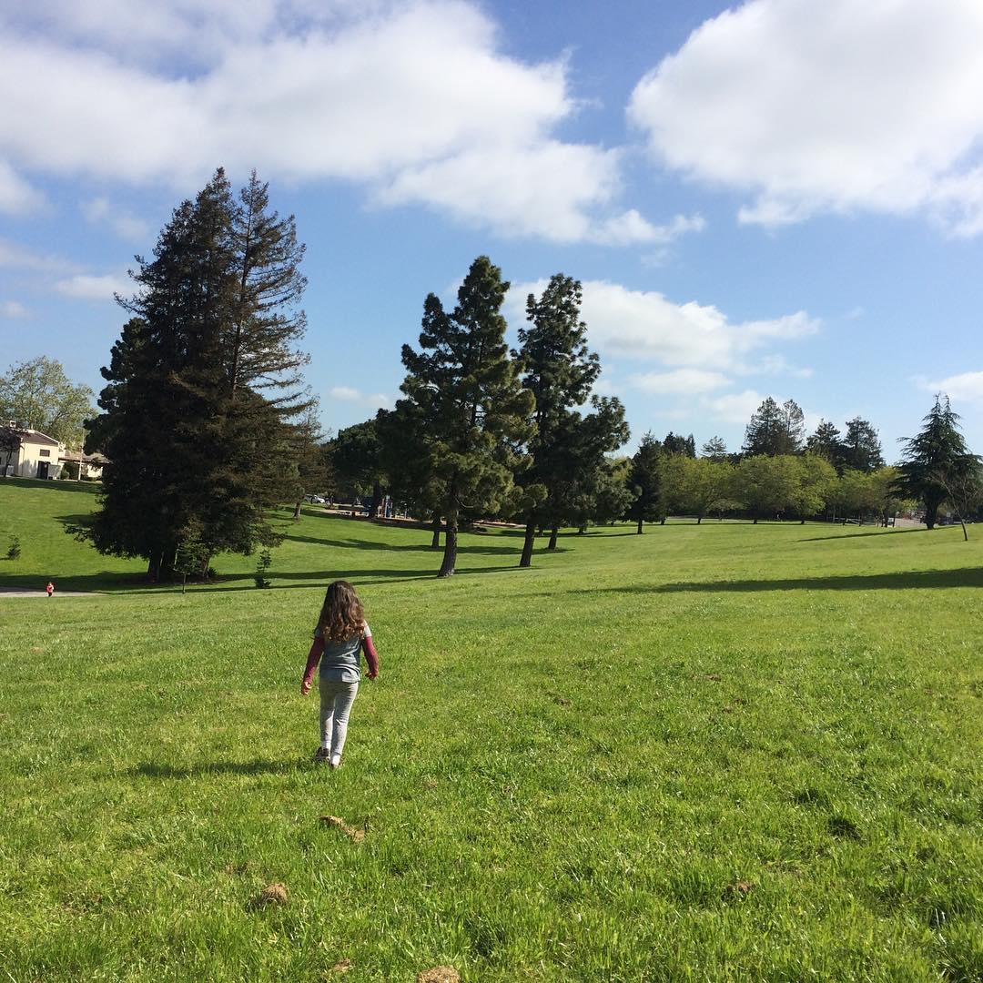 Love the City of Hayward: San Felipe Park